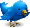 ۱۰ روش برای امنیت بیشتر شما در توییتر